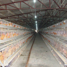 Layer Poultry Cages for Hens