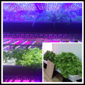 4ft 30W LED grow lights bar 5730SMD for mocle farm smart garden