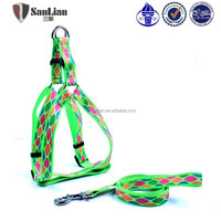 Dog harness/ dog collars and leashes