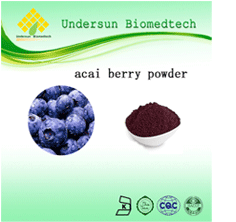 Blueberry juice powder with Food additive by manufacture organic blueberry beverage instant extract juice powder