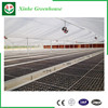 Alibaba China Low Cost Greenhouse Tunnel