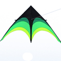 BIG New funny delta kite for promotion