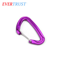 high quality strong custom D shaped wire gate carabiner