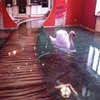 Clear and beautiful 3D epoxy floor coatings