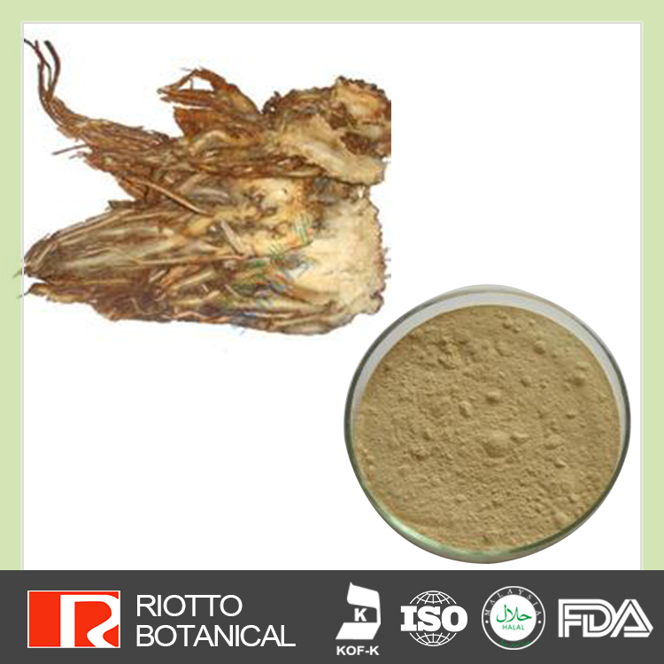 2017 wholesale low price Angelica sinensis Extract dong quai extract powder CAS NO. 4431-01-0 ligustilide 1% !!!