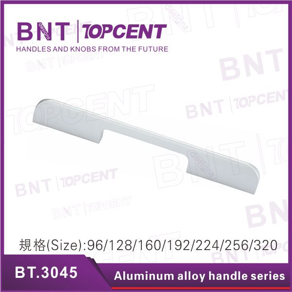 [BZ.2735] Fancy new corrosion-resistance garage door lock handle