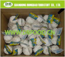 2015 China new fresh garlic price