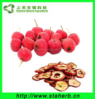 Herbal extract Hawthorn Berry Extract / Hawthorn P.E / Hawthorn extract