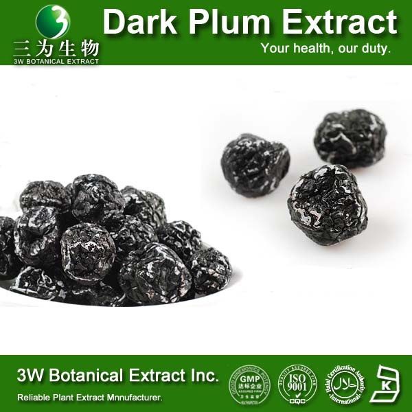 Top Quality 100% Pure Dark Plum Fruit P.E. Supplier Pharmaceutical Grade