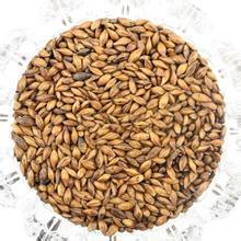 Yantai Zhongsheng Import& Export good supply of Russian Feed barley for animal the crop of 2014