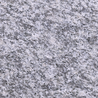 China factory wholesale flamed brushed Zhangpu g603A granite