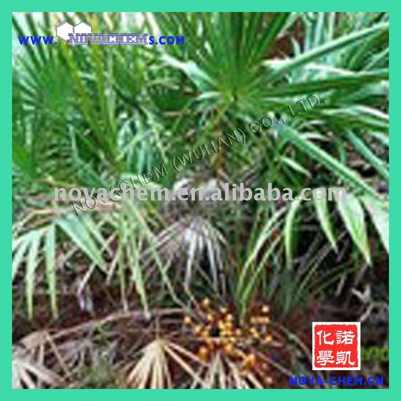 Saw Palmetto Fruit Extract at factory price 001