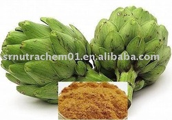 High quality Artichoke Extract