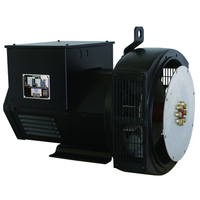 Brushless Low Consumption Green Power Generator Prices