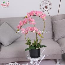 Factory direct cheap real touch indoor decorative potted pink butterfly orchid flower artificial plants
