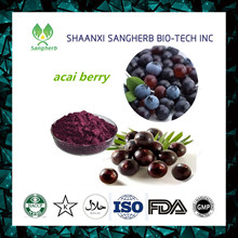 Professional acai berry extract antioxidant of CE and ISO9001 standard