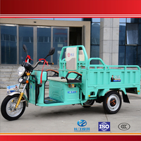 China Newly Developed 3 Wheel Cargo Electric Tricycle with Seat in Cargo