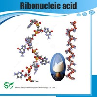 High quality Pure RNA sodium,73049-39-5,Ribonucleic Acid sodium GMP manufacturers