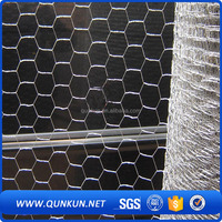 Curved Electro Galvanized Welded Hexagonal Wire Mesh