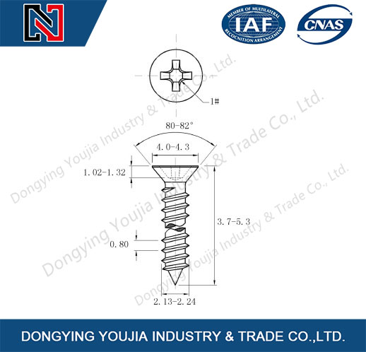 DIN7982 Stainless Steel Cross Recessed Countersunk Head Tapping Screw