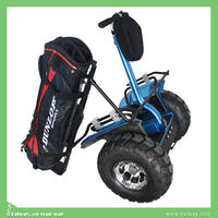 Factory direct sale 2 wheel balance electric golf carts, children electric car price