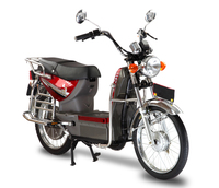 cheap powerful stealth sport electric bike 800w for adults