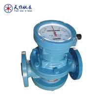 Digital/mechanical oil flow totalizer meter