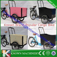 2015 new 3 wheel electric tricycle cargo bike for adult and kids