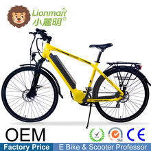 custom logos raleigh bikes electric bicycle