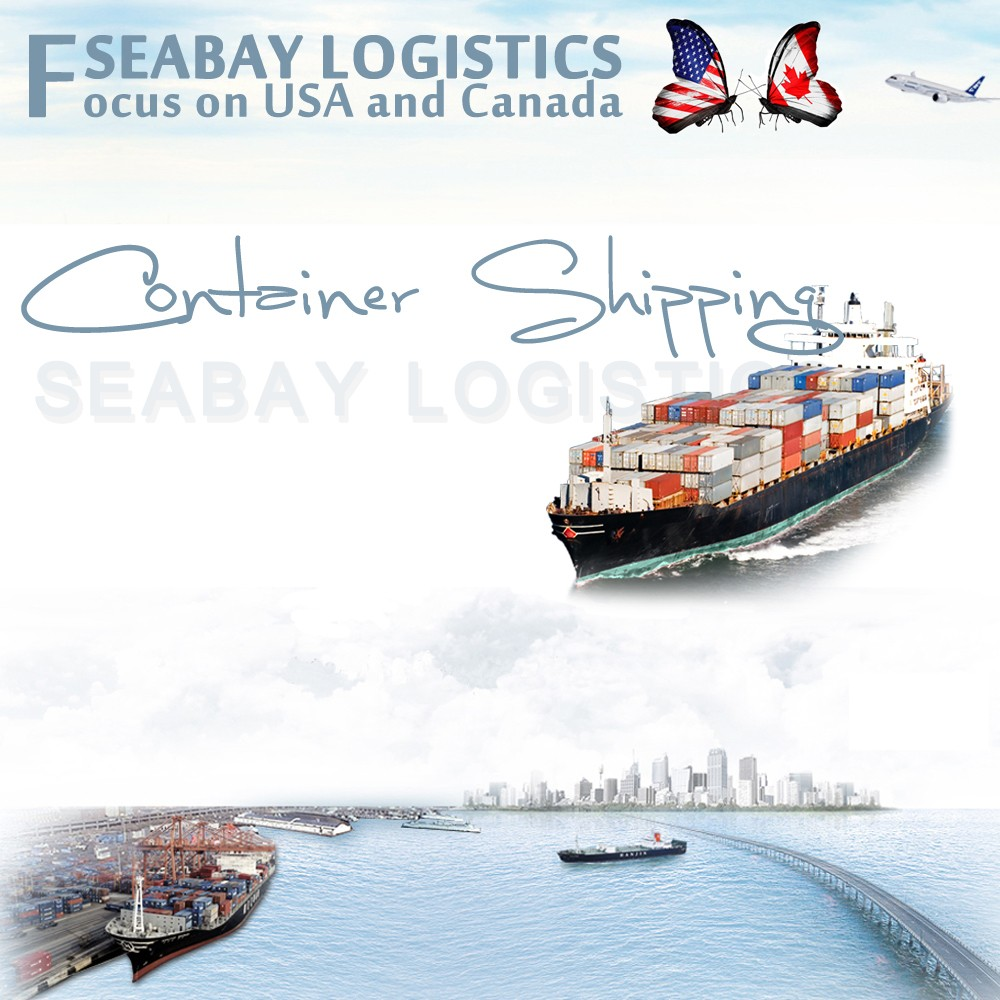 Professional Container Shipping Service to USA from China