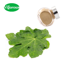 100% pure natural fig leaf extract powder