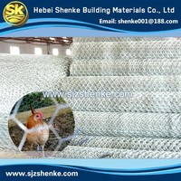 Good Quality China Professional Chicken Coop Galvanized Wire Mesh