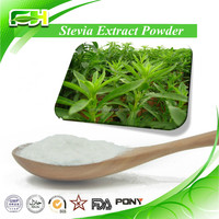 2016 New Certified Organic Stevia Extract