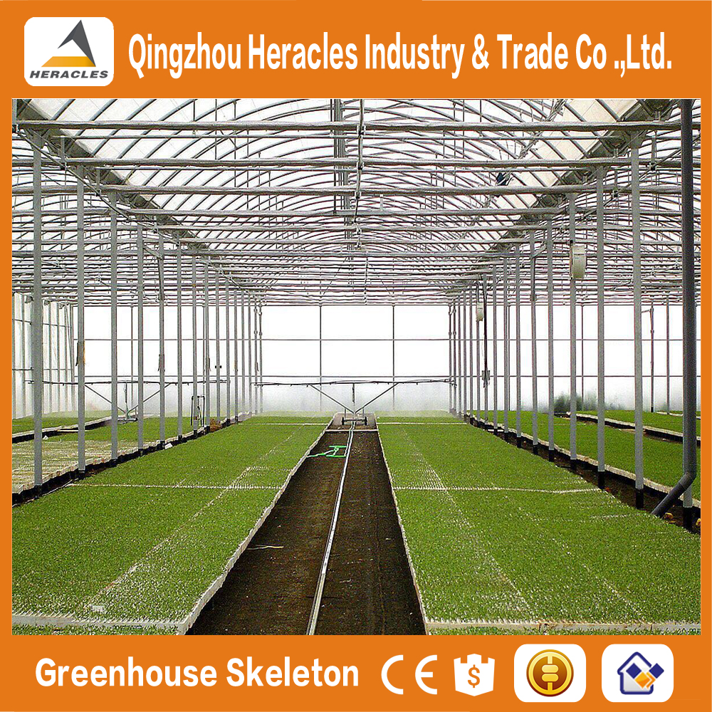 China Alibaba Factory price trade assurance green house of plastic film