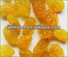dried delicious chinese jumbo gold raisin