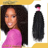 Wholesale Natural Afro Kinky Curly Brazilian Hair Braiding Hair