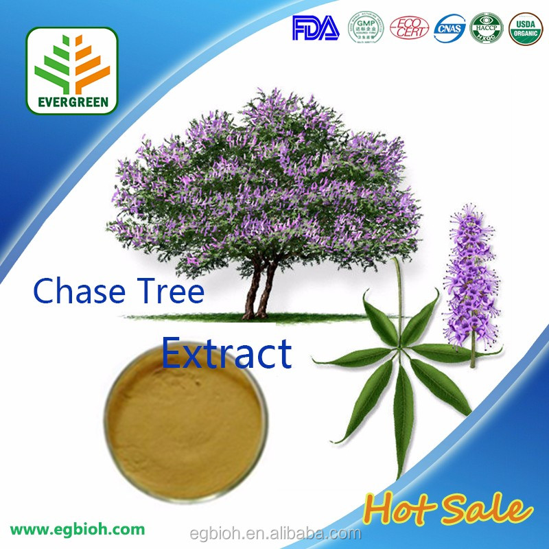 Evergreen Factory Chaste berry Extract / Chaste Tree Berry Extract / Vitex agnus-castus