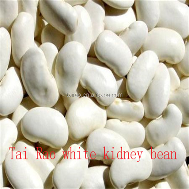 2016 New crop origin white kidney beans organic high quality kidney beans