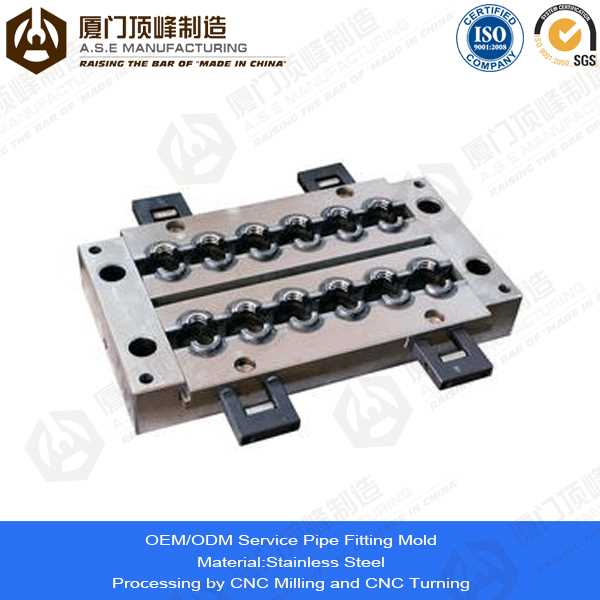 Xiamen A.S.E OEM Manufacturing Mold Parts for commodities international company inc
