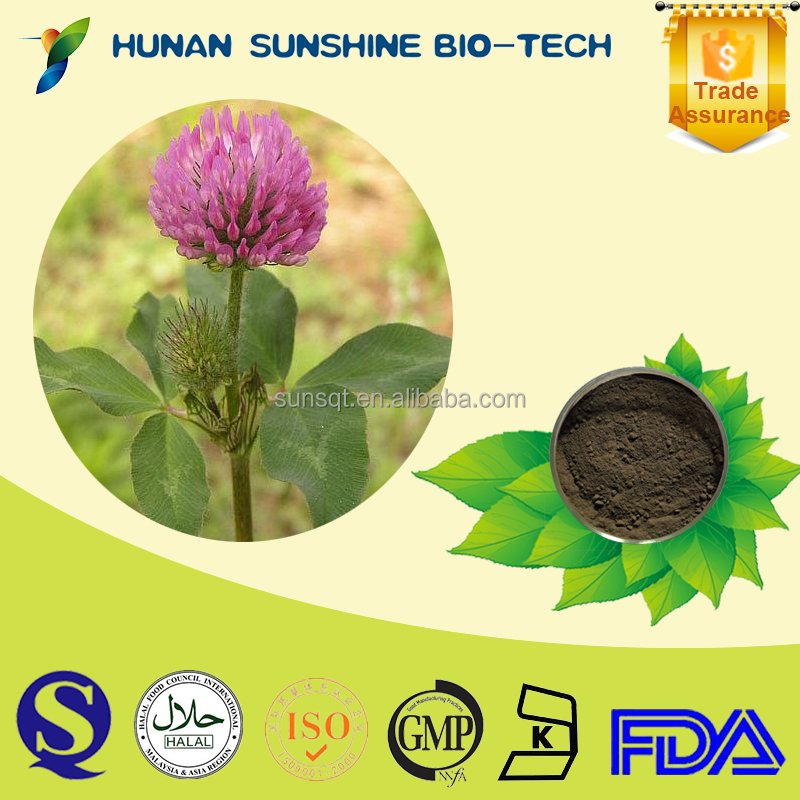 Hot Sales Plant Extract Red Clover Extract