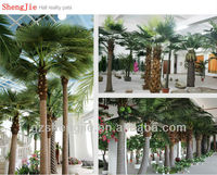artificial palm trees/out door plants/date palm for sale/2013 hot selling big trees