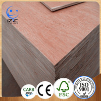 china wooden marine bintangor plywood mobile home furniture