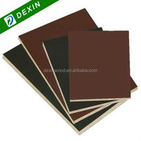 1250mmx2500mmm Or 1220mmx2440mm Construction Film Faced