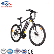 8FUN central drive motor 36v350w electric bike