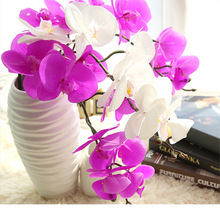 MW31580 butterfly orchid for wedding decoration home fashionable decoration long term preserve