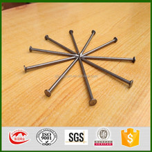 Anping good quailty common nails for construction usage iron nails