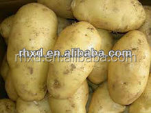 2014 new crop fresh peeled potatoes
