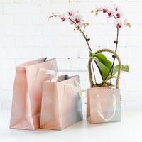 Alibaba China Supplier New Products Luxury Paper Shopping Bag