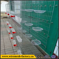 Customized Breeding Cage With Four Doors