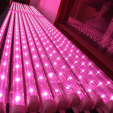 1200mm high power 20w led plants grow light bar for greenhouse microgreens
